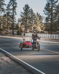man with his dog on a motorcycle and sidecar